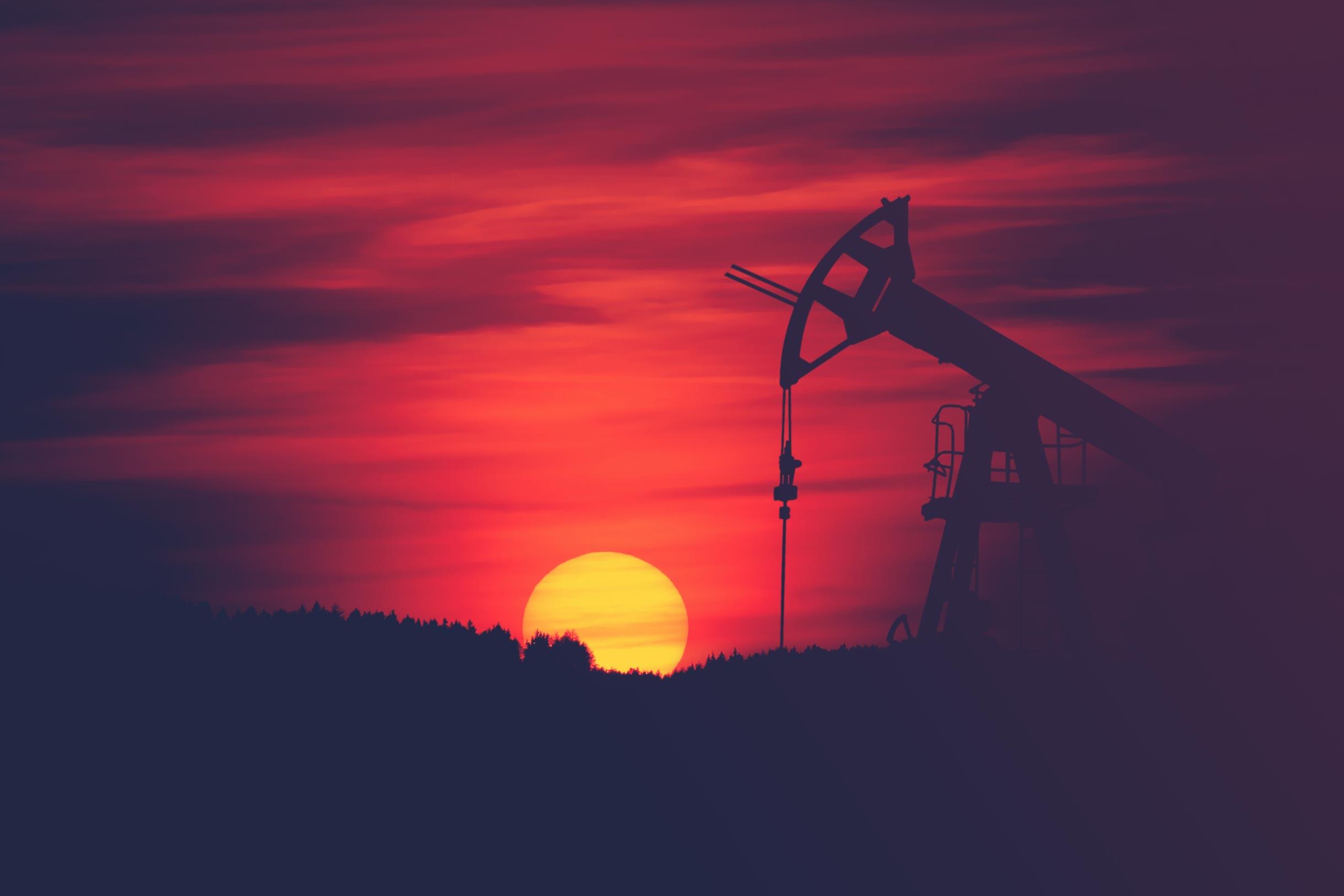 Petrolul<br> în Noua Economie